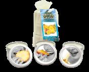 Bag Candle Tropical Trio Mango Margarita, Banana Daiquiri, Pineapple Breeze 2oz – EBHSCK300