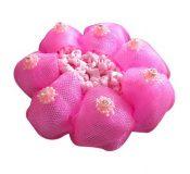 Pack of 2 Girl Hair Accessory Snood Ballet Dance Hair Net With Diamond Dark Pink – GM-BEA7706134011-ZARA01736