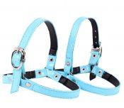 Women's Detachable Shiny Shoe Strap, High Heels Anti-Loose Shoelace, Blue – ST-HEA3780111-ERIC00555